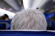 gray haired persons head seen from behind sitting in an airplane