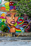 Mural in Miami's beginning to redevelop Buena Vista West neighborhood just north of Wynwood