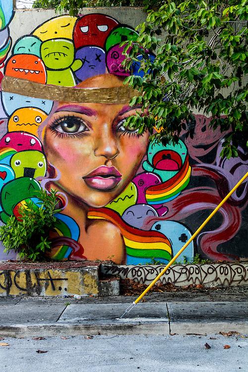 Mural in Miami's beginning to redevelop Buena Vista West neighborhood just north of Wynwood