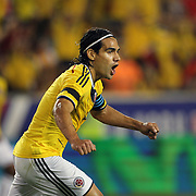 Radamel Falcao, Colombia, starts to celebrate a disallowed goal during the Columbia Vs Canada friendly international football match at Red Bull Arena, Harrison, New Jersey. USA. 14th October 2014. Photo Tim Clayton