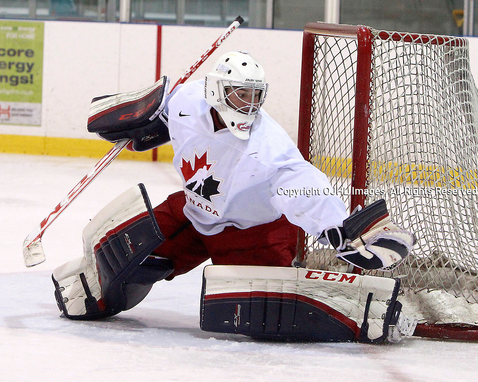 OAKVILLE, ON - Oct 28 : 2013 World Junior A Challenge / Defi Modial Junior A 2013,,<br /> (Photo by Brian Watts / OJHL Images)
