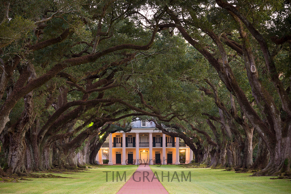 Oak Alley plantation antebellum mansion house and canopy of oak trees along the Mississippi River at Vacherie, Louisiana, USA