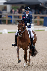 Scholtens Emmelie, NED, Infinity<br /> World Championship Young Dressage Horses - Ermelo 2019<br /> © Hippo Foto - Dirk Caremans<br /> Scholtens Emmelie, NED, Infinity
