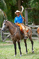 Pantaneiro cowboy on horse with cow horn, The Pantanal, Mato Grosso, Brazil