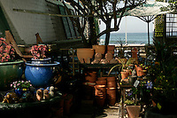 many different pottery standing on shelves. Kalk Bay/Simonstown Generic Photos, Cape Town South Africa