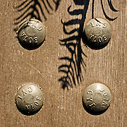 Bolts and fern boardwalk detail of stormwater facilities, Elizabeth Caruthers Park, Portland, Oregon.