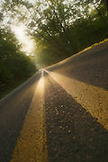 country road at sunrise with yellow stripe down the middle through the forest of the Ozark Mountains of Arkansas