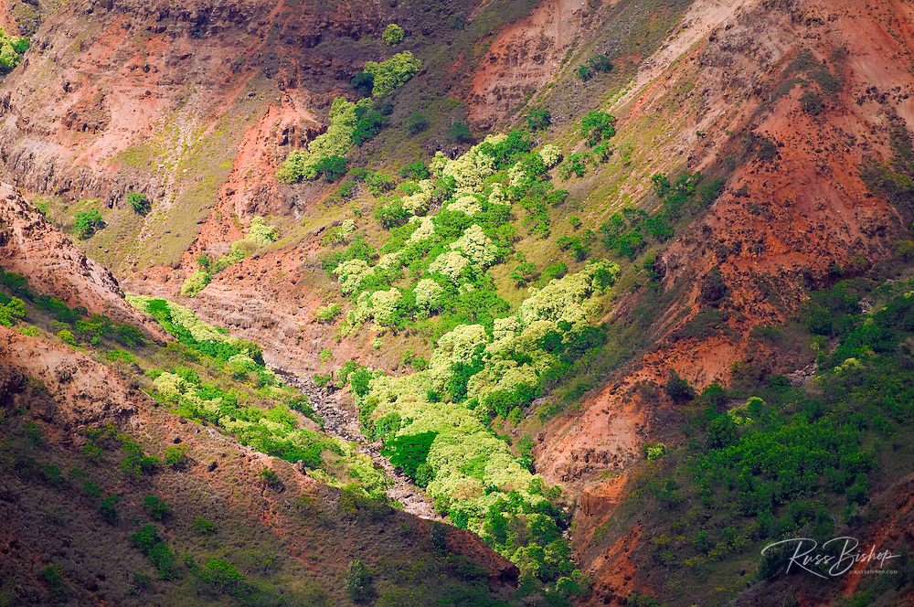 Waimea Canyon, Waimea Canyon State Park, Island of Kauai, Hawaii