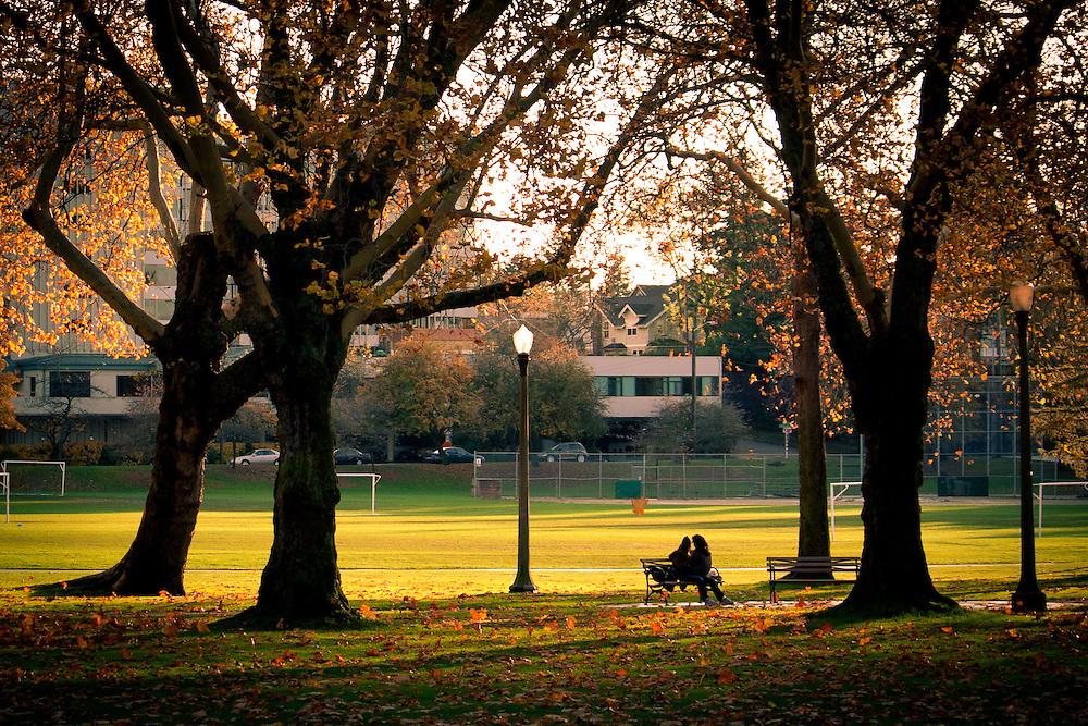 Green Lake, November No.1