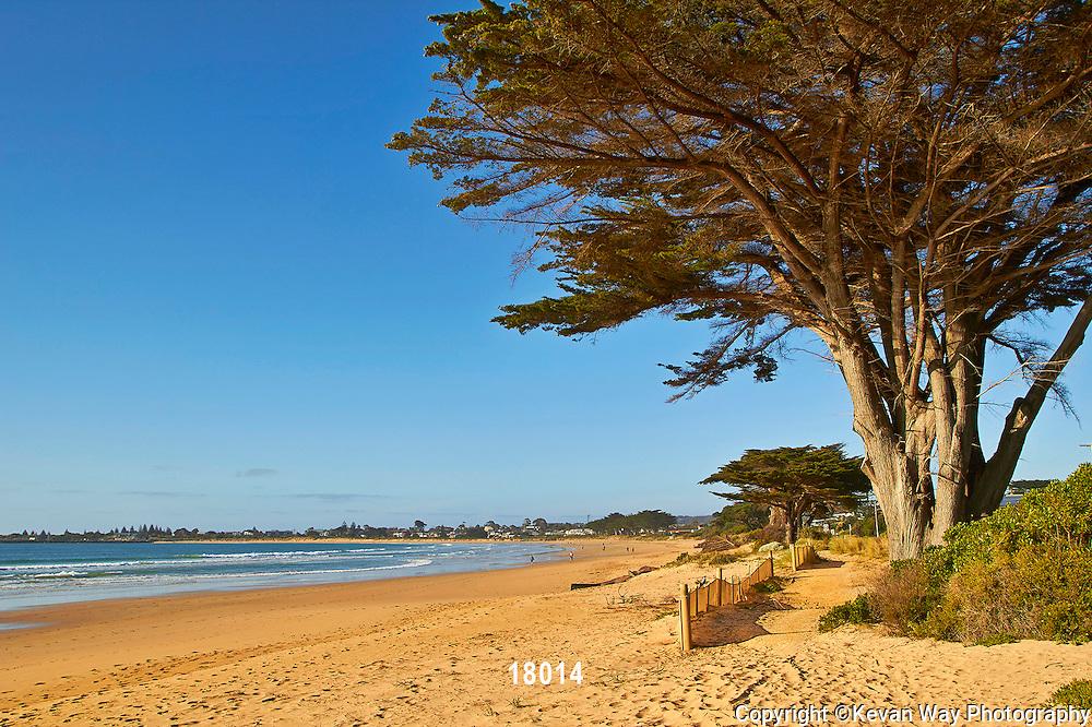 morning on the beach Apollo Bay