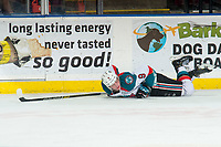 KELOWNA, CANADA - MARCH 3:  Mark Liwiski #9 of the Kelowna Rockets lies on the ice after a check by the Portland Winterhawks on March 3, 2019 at Prospera Place in Kelowna, British Columbia, Canada.  (Photo by Marissa Baecker/Shoot the Breeze)