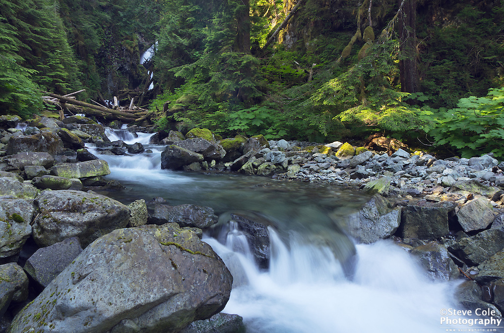 Ipsut Creek - Mount Rainier National Park