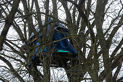 Harefield, UK. 3 February, 2020. A treehouse at the woodland camp section of Harvil Road wildlife protection camp. Environmental activists from Save Colne Valley and Extinction Rebellion are seeking to prevent construction works for the HS2 high-speed rail link in the Colne Valley which would require the felling of hundreds of mature trees.