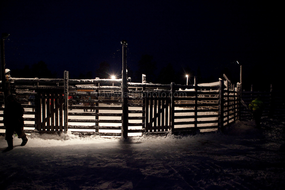 Corral for reindeer roundups at Vuomaselkä, Lapland, where semi-domesticated deer are sorted and seperated for breeding, slaughter, returned to their owners, injected for parasites, or released back into the forest.