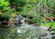 landscape and water, waterfall, Marriott resort, Lihue, Kauai Hawaii