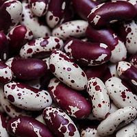 Dried, heirloom 'Jacob's cattle' beans