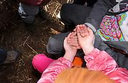 Students learn about earthworms at Tucson Village Farm, Tucson, Arizona, USA.