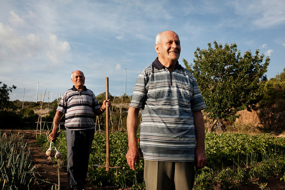 PERDASDEFOGU, SARDINIA, ITALY - 29 JUNE 2013: (L-R) Brothers Vitalio (87, a retired postman) and Adolfo (90) are here in their vegetable garden in Abbafittania, in the outskirts of Perdasdefogu, the day before Claudia Melis' 100th birthday in Perdasdefogu, Italy, on June 29th 2013.<br /> <br /> Last year, the Melis family entered the Guinness Book of World Records for having the highest combined age of any nine living siblings on earth &mdash; today more than 825 years. The youngest sibling, Mafalda &ndash; the &quot;little one&quot; &ndash; is 79 years old.<br /> <br /> The Melis siblings were all born in Perdasdefogu to Francesco Melis and Eleonora Mameli, who had a general store. Consolata, 106, is the oldest, then Claudia, 100; Maria, 98; Antonino, 94; Concetta, 92; Adolfo, 90; Vitalio, 87; Fida Vitalia, 81; and Mafalda, the baby at 79. Their descendants now account for about a third of the village.