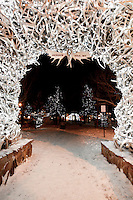 The Town Square antler arches glow with life at night in downtown Jackson, Wyoming.