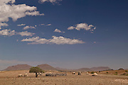 Village of Orupembe, northwest Namibia