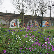 London,England,UK : 11th April 2016 : I takes a walk on Mile End Road and Mile End park. I notice a very friendly, quiet community everybody is so helpful to Stop and help you with directions. Stanning building and the Mile End Park is so clean and big in Mile End, Tower Hamlets, London. Photo by See Li