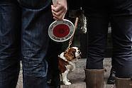 20140122_NYT_DogPoop