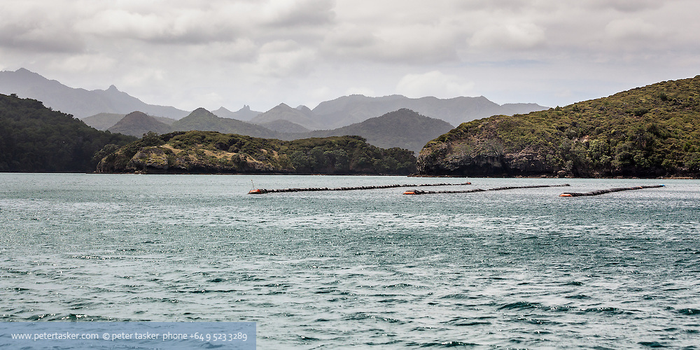 Photographed in Man of War Passage.  Looking back at the hills of Great Barrier Island after leaving Port Fitzroy.  Mussel farm in foreground.