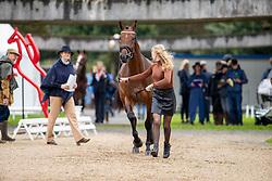 De Haas Nina, NED, Houdini<br /> Mondial du Lion - Le Lion d'Angers 2019<br /> © Hippo Foto - Dirk Caremans<br />  16/10/2019