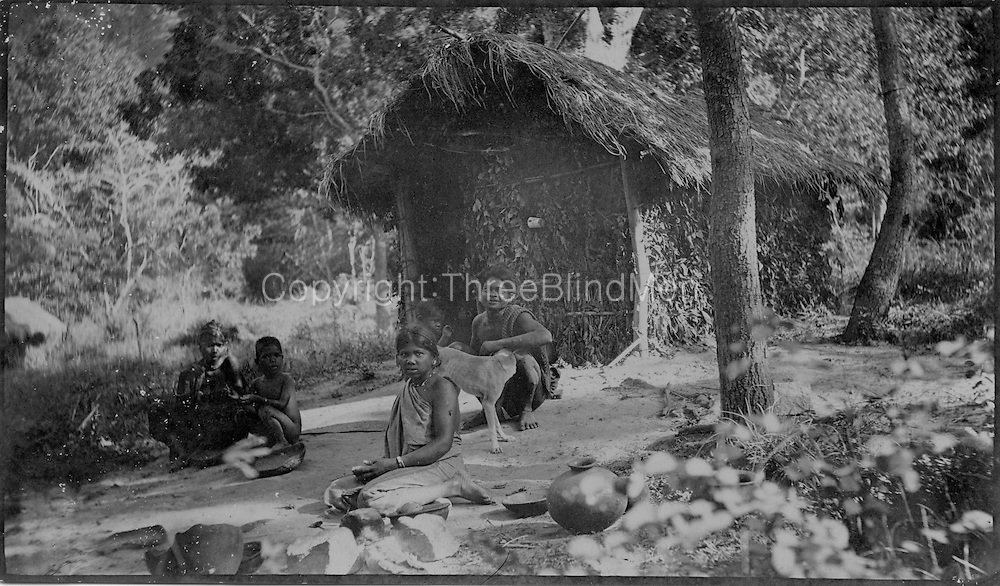 Veddah grass-thatched hut - walls of wattles and leaves. Dr. R. L. Spittel, Colombo.
