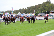 The horses gallop towards the bend at the end of the home straight first time round during The Little Green Rascals Childrens Nurseries Stakes over 2m (£17,000)  during the Newby and the Press Family Raceday at York Racecourse, York, United Kingdom on 9 September 2018. Picture by Mick Atkins.