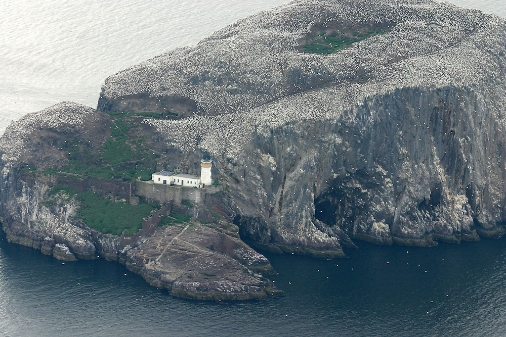 Aerial shot of Bass Rock nature reserve, just of North Berwick, east Lothian
