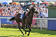 QUE AMORO (8) ridden by Phil Dennis and trained by Michael Dods winning The Sky Bet Apprentice Handicap Stakes over 5f (£70,000)  during the Ebor Festival at York Racecourse, York, United Kingdom on 24 August 2019.