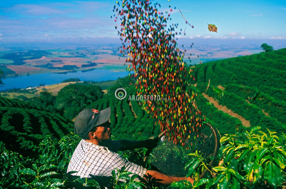 Resultado de imagem para cafe minas gerAIS