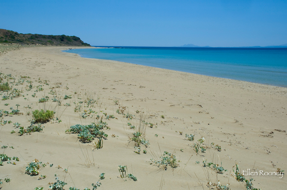Kaminia Beach (Turtle Beach) near Skala;  Kefalonia, The Ionian Islands, Greece
