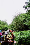 Group of ravers in forest with woman dancing, Wales 2012