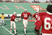 COLLEGE FOOTBALL: Quarterback Guy Benjamin #7 of Stanford University congratulates wide receiver James Lofton #30 after his TD catch during the 1977 Sun Bowl game against LSU played on Decmber 31, 1977 at Sun Bowl Stadium at the University of Texas El Paso in El Paso, Texas.  Also visible is Bill Kellar #42 and Paul Hibler #69.