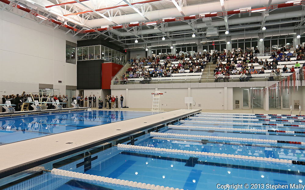 People sit in the stands as members of the Linn-Mar swim teams stand on the pool deck during the ribbon cutting at the new Linn-Mar Aquatic Center in Marion on Thursday, November 14, 2013.