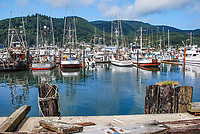 Garibaldi, Oregon, USA, fishing village and marina, 200808310738.<br />