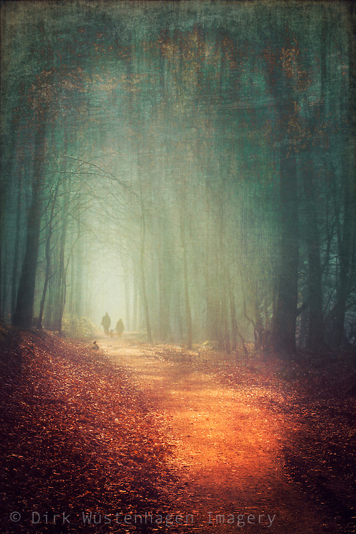 Couple with dog walking through a sunlit hazy forest - texturized manipulated photograph