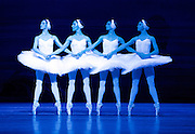 Swan Lake <br /> Bolshoi Ballet <br /> at The Royal Opera House, Covent Garden, London, Great Britain <br /> press photocall / rehearsal <br /> 29th July 2016 <br /> <br /> Four cygnets <br /> <br /> Daria Lovtsova<br /> Diana Kosyreva<br /> Margarita Shrainer <br /> Daria Gurevich<br /> <br /> Photograph by Elliott Franks <br /> Image licensed to Elliott Franks Photography Services
