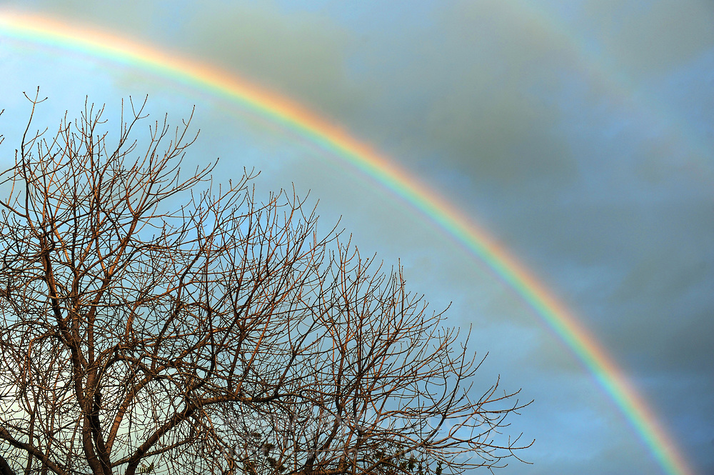 A late afternoon rainbow on Monday in Salinas, after weekend rains finally leave town.