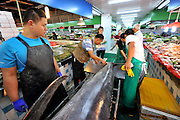 QINGDAO, CHINA - SEPTEMBER 12: (CHINA OUT) <br /> <br /> Fisherman Catches Over 300 Kilograms Swordfish<br /> <br /> Staffs measure a 310-kilogram weight swordfish at a wild seafood supermarket on September 12, 2015 in Qingdao, Shandong Province of China. A fisherman caught a swordfish on Friday in Yellow Sea which weighted 310 kilograms and was in 4.1 meters long. The swordfish has carried to a seafood supermarket in Qingdao City. <br /> ©Exclusivepix Media