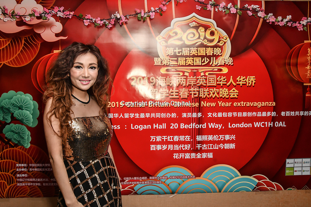 Zhu Zhena is a chinese singer performs at the 7th 2019 Chinese New Year Extravaganza showcasing more than 300 performers including musical Chinese dance , Taiji ,Kungfu,magic face change and much more at Logan Hall. The performance from more than 20 arts groups from China and UK on 2nd Febuary 2019, London, UK.