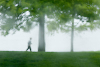 Single person jogging through waterfront park in the rain, Bellingham Washington