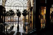 New York. world financial center.  palm trees in the atrium of the winter garden / palmiers dans le jardin d'hiver du world financial center ,New York - Etats Unis
