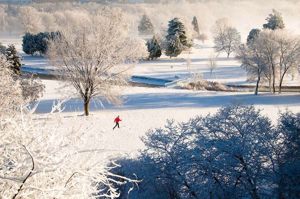 Idaho. Boise. Cross country skier in Ann Morrison Park, fresh winter snow. MR