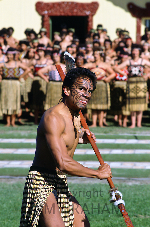 Maori Warrior at a tribal gathering in New Zealand.