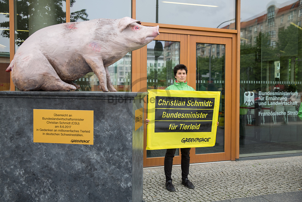 Berlin, Germany - 08.06.2017<br /> <br /> Greenpeace protest at the German Federal Ministry of Food and Agriculture (BMEL). Environmental activists want to hand over a &quot;poor sod&quot; statue to Minister Christian Schmidt. On banners, they denounce that the CSU politician is the &quot;Federal Minister for animal suffering&quot;.<br /> <br /> Greenpeace Protest am Bundesministerium f&uuml;r Ern&auml;hrung und Landwirtschaft (BMEL). Umweltschutz-Aktivisten wollen eine &rdquo;Arme Sau&rdquo; Statue an Minister Christian Schmidt uebergeben. Auf Bannern prangern Sie an das der CSU-Politiker der &quot;Bundesminister fuer Tierleid&quot; sei.<br /> <br /> Photo: Bjoern Kietzmann