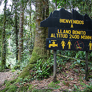 Trail to the top of Chirripo Mountain in Chirripo National Park, Costa Rica. Chirripo is the highest mountain in Costa Rica.