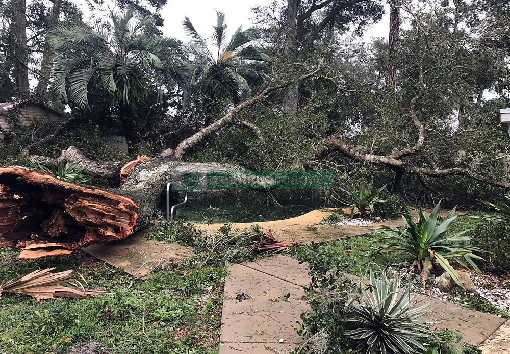 September 11, 2017 - Orlando, Florida, U.S. - A huge tree knocked down by Hurricane Irma winds Sunday night covers a backyard pool in the Woodlands subdivision of Longwood, Fla. on Monday. (Credit Image: © John Armstrong/TNS via ZUMA Wire)